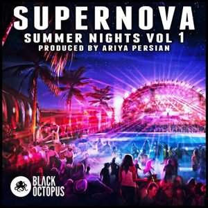 summer nights edm midi package
